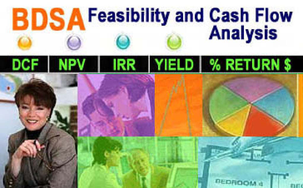 BDSA Project Feasibility and Cash Flow